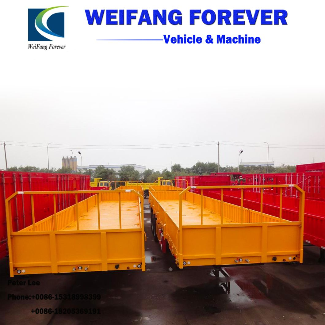 60t Side Wall Cargo Truck Semi Trailer with Container