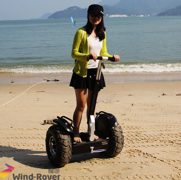 Wind Rover Single Seat Golf Car Self Balance Electric Car 2 Wheels Golf Cart