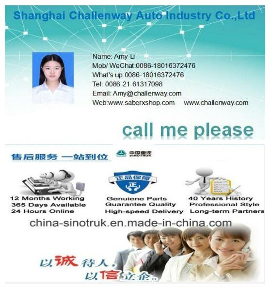 High Quality Original Shock Absorber Air Bag Series 52270-2253, Zg-L015