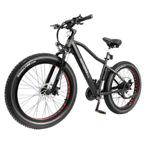 New Design 250W 350W 500W Factory Hidden Battery Electric Fat Bike