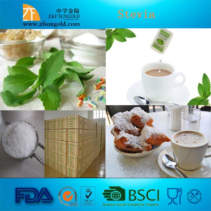Hot Selling Sweetener Extract Stevia Rebaudiana