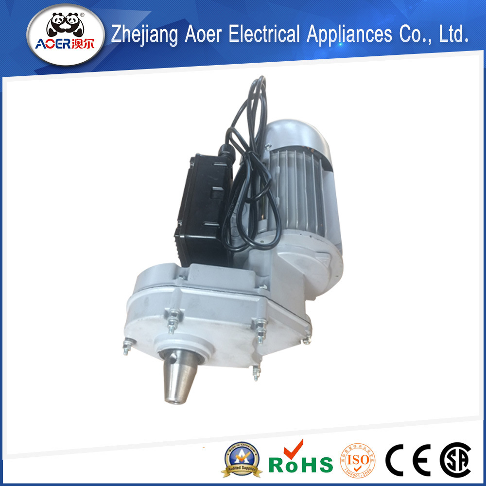 Torque Direct Drive Electric Gear 550W Induction Motor Model