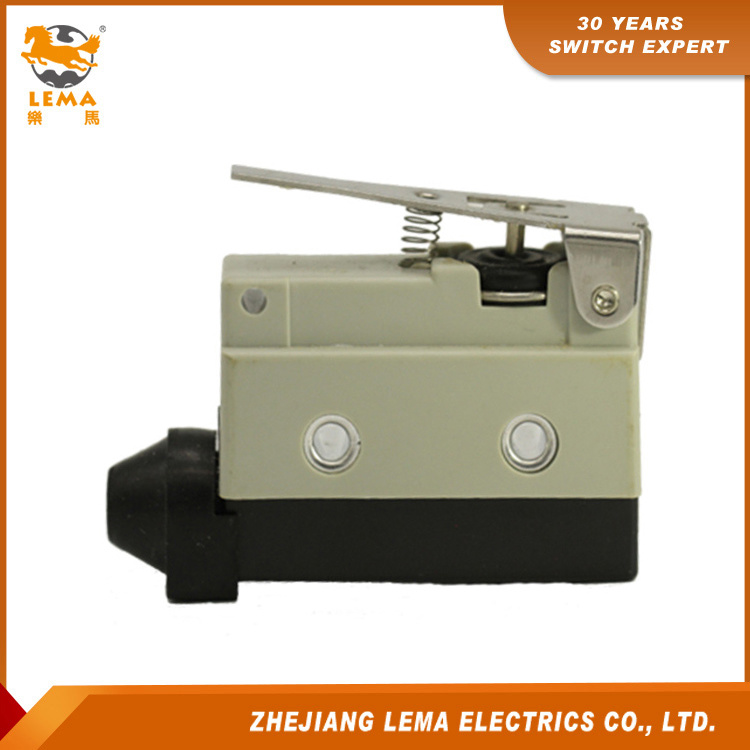 Lema Current Waterproof Short Hinge Lever Limit Switch Lz7140