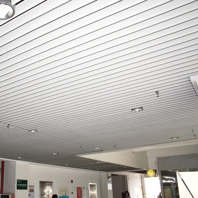 Aluminum Vertical Screen Ceiling for Interior Decorative