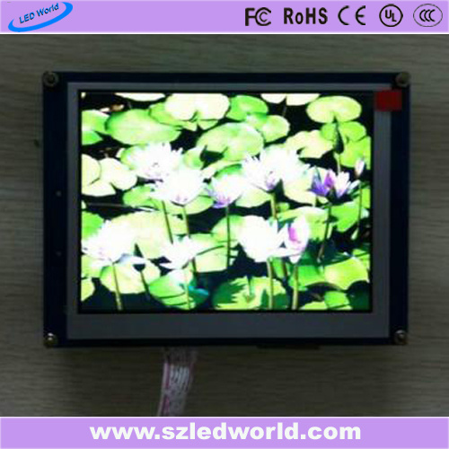 Large LED Video Wall P5 Indoor Full Color Display