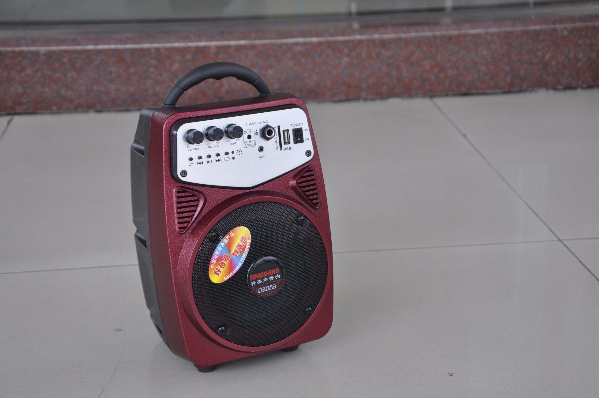 Feiyag/Temeisheng Portable Mini Speaker with SD Card Slot and HiFi Bass Vibration Speaker for Outside Using Q2