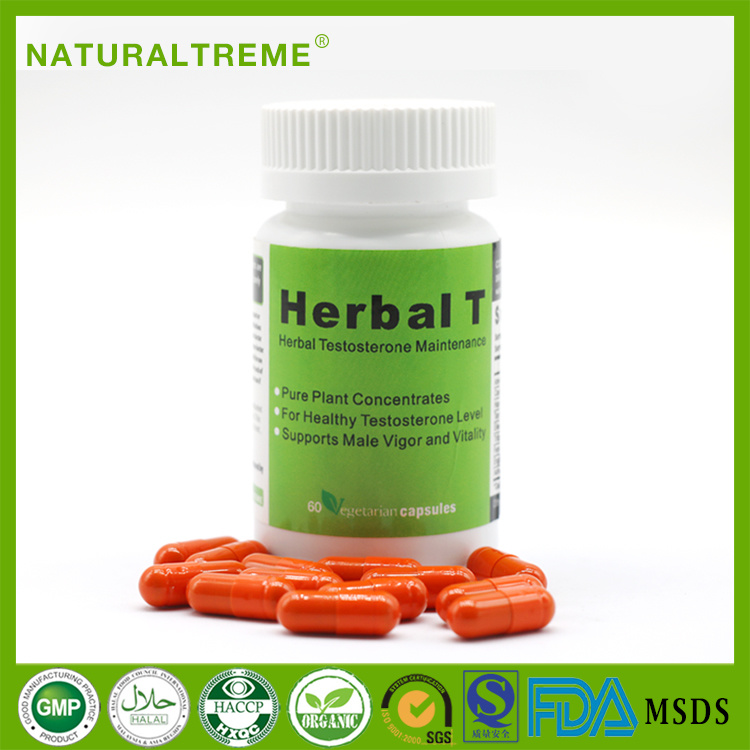 Herbal T Men′s Energy Tablets for Long Time