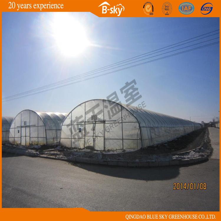 Modern Design Po Film Multi-Span Greenhouse