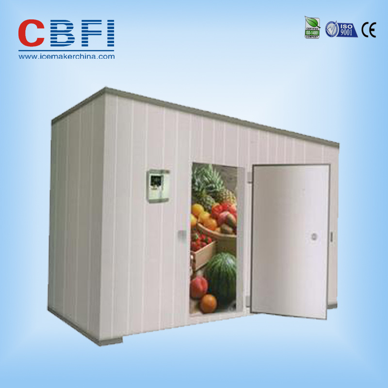 Deep Freezer Fish Cold Room
