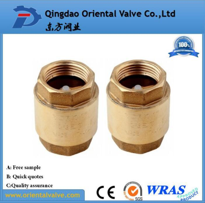 NPT Bsp Thread Brass Check Valve with Plastic Core