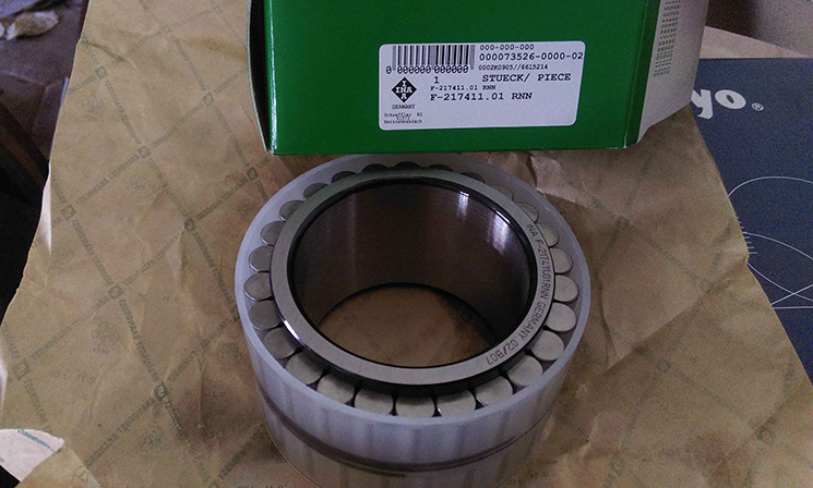 Excavator Bearing F-217411.01 Cylindrical Roller Bearing