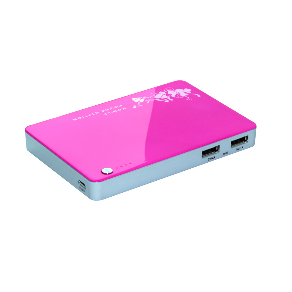 Power Bank 5000mAh, Double Output USB Portable Power (YR50)
