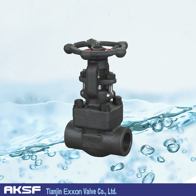 A105 Thread/ Flanged Forged Ball Valve