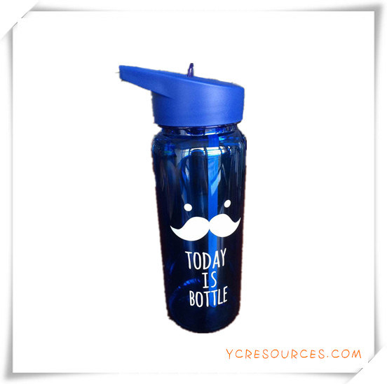 Fruit Infuser Water Bottle for Promotional Gifts (HA09059)