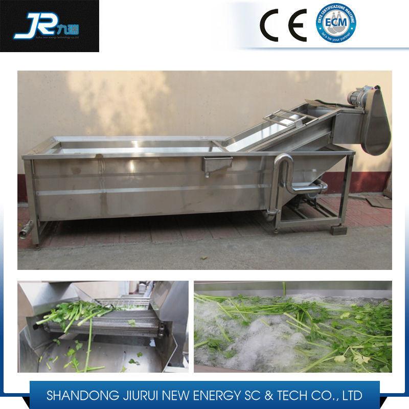 Guava Washing Drying Machine