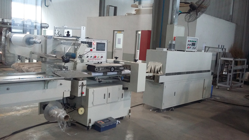 Full Automatic Pillow Shrink Packing Machine for Cookies, Biscuit, Chocolate