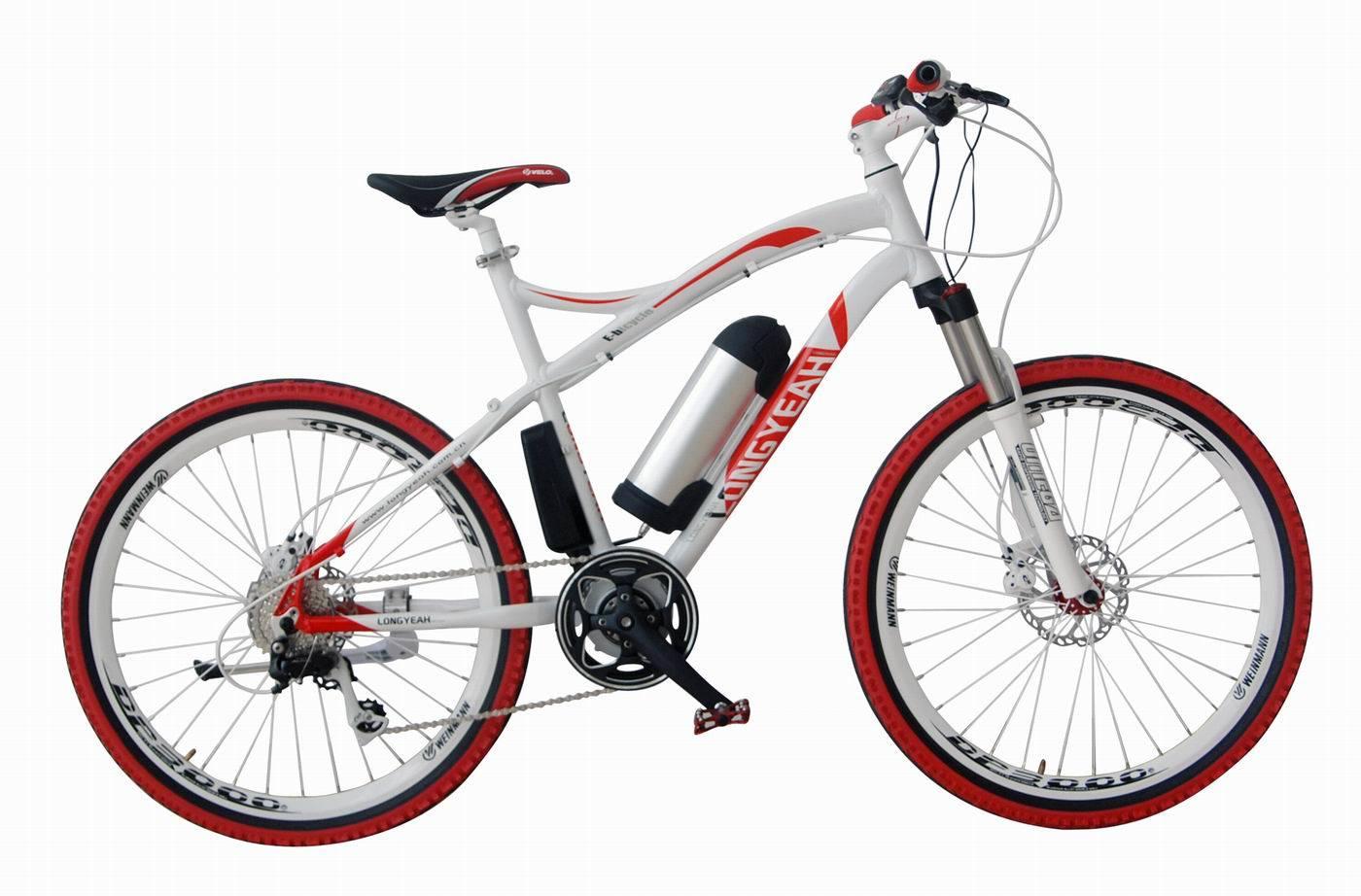 Mountain Electric Bike (TDE1202Z)