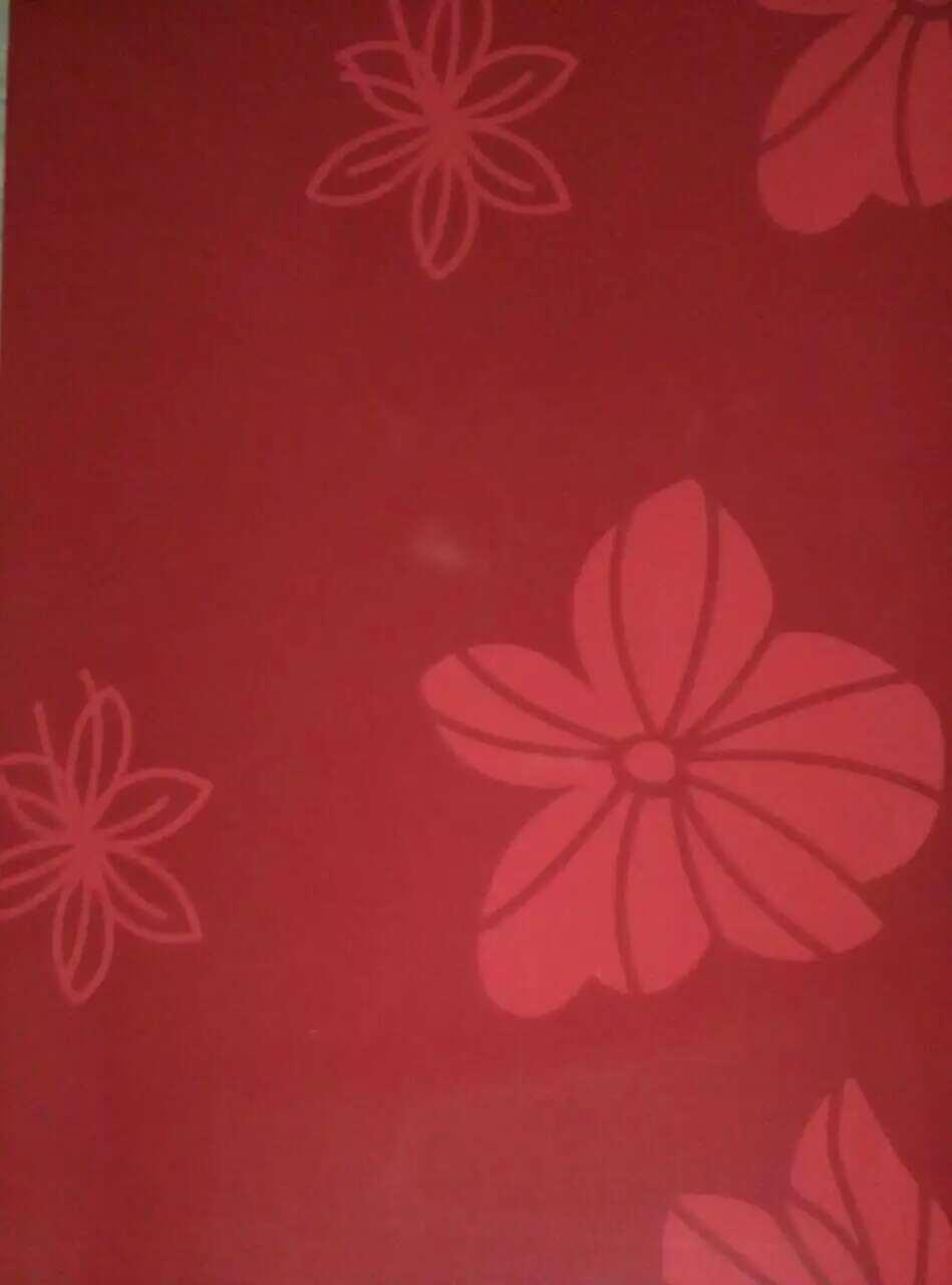 Flower Printing PPGI Prepainted Galvanized Steel Coil Hot Rolled Plate Steel
