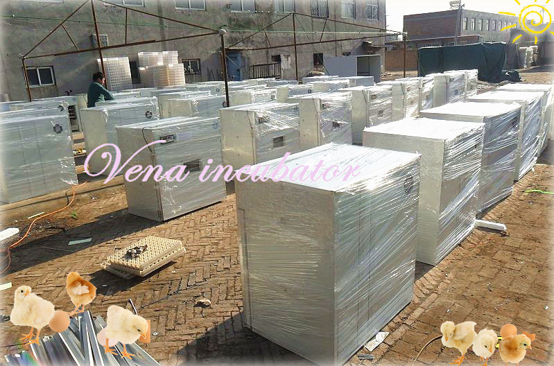 3975 Eggs Automatic Quail Egg Incubator with Competitive Price (VA-1584)