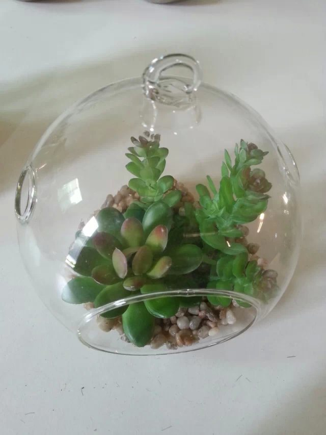 Artificial Plants and Flowers of Mini Plant Succulent Gu-SD0283