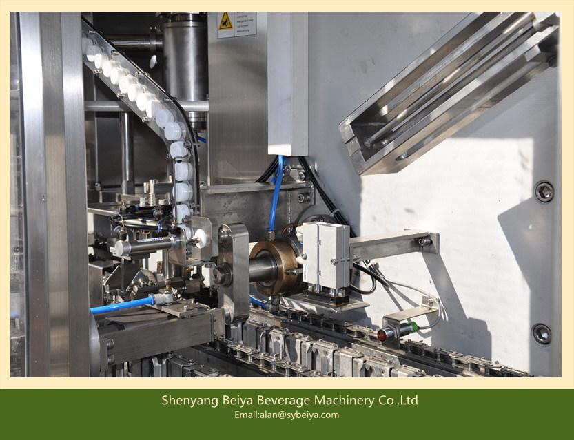 Apple Juice Carton Automatic Packing Machine (BW-2500)