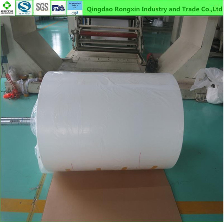 Single Side PE Coated Cup Paper for One-off Paper Cups