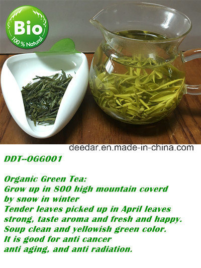Organic Snow Green Tea
