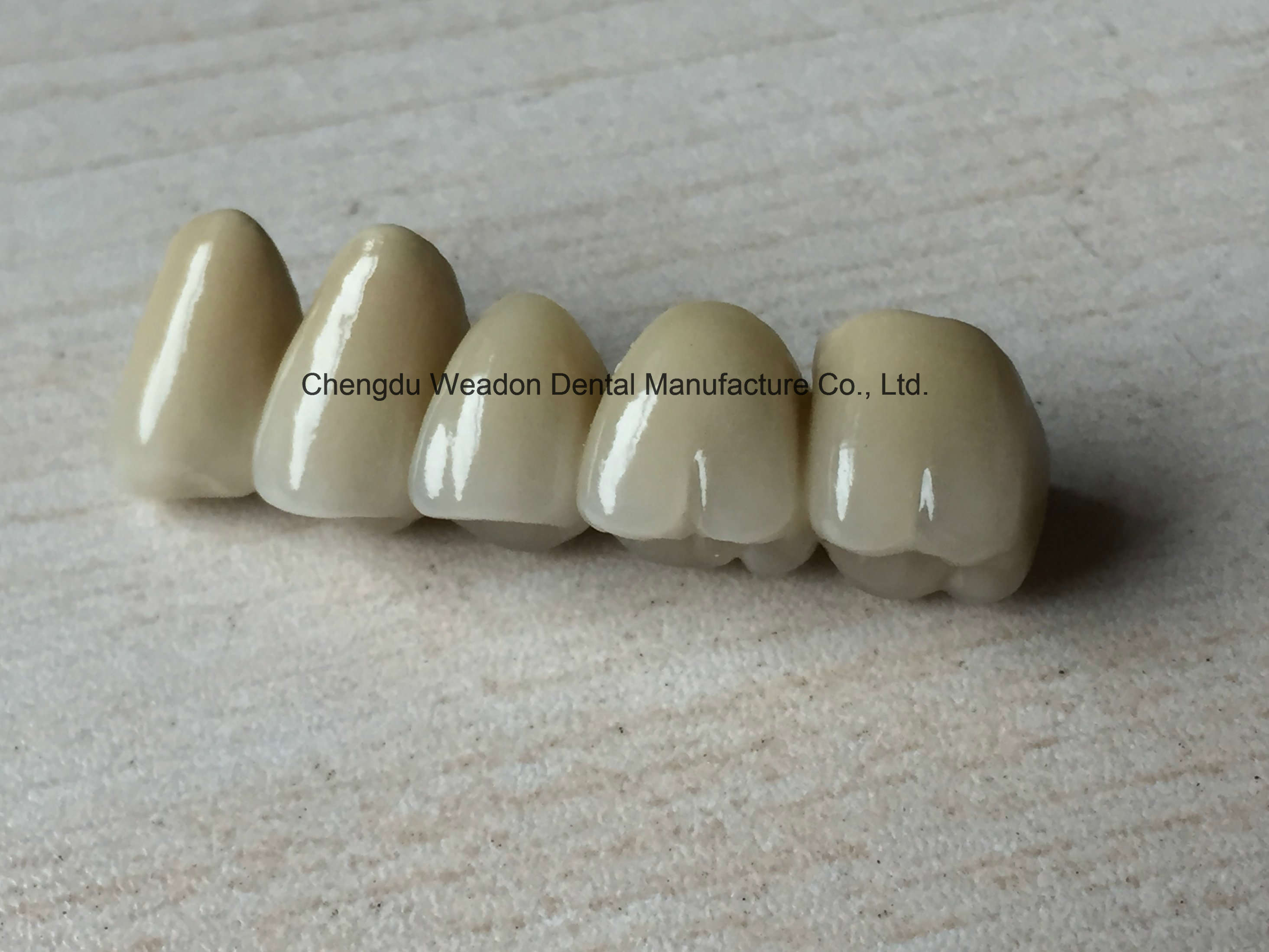 Pfm Bridge Denture for Clinic From Chinese Dental Lab