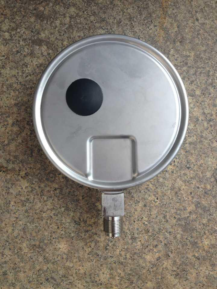Fillable All Stainless Steel Pressure Gauge