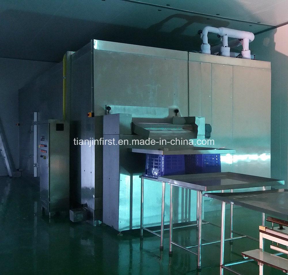 Fluidized Quick Freezing/Fluidization Individually Quick Freezer