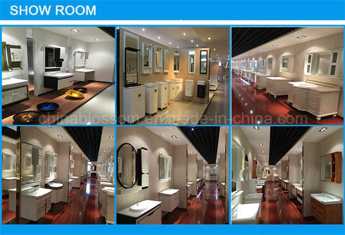 Floor Standing Bathroom Furniture Slim Bathroom Vanity (BLS-16014)
