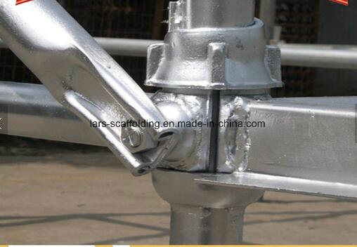 Factory Hot Sale Cuplock System Scaffold for Construction Material