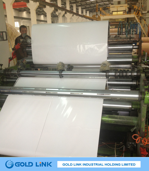 Cast Coated Sticker Paper for Label Printing (CC4A212)