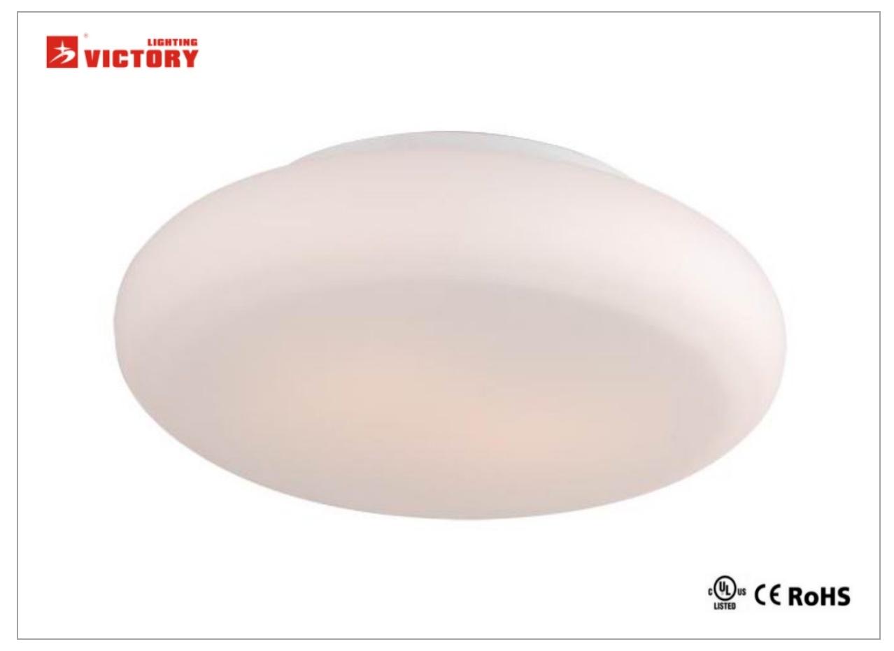 Modern Simple LED Ceiling Surface Lamp for Living Room