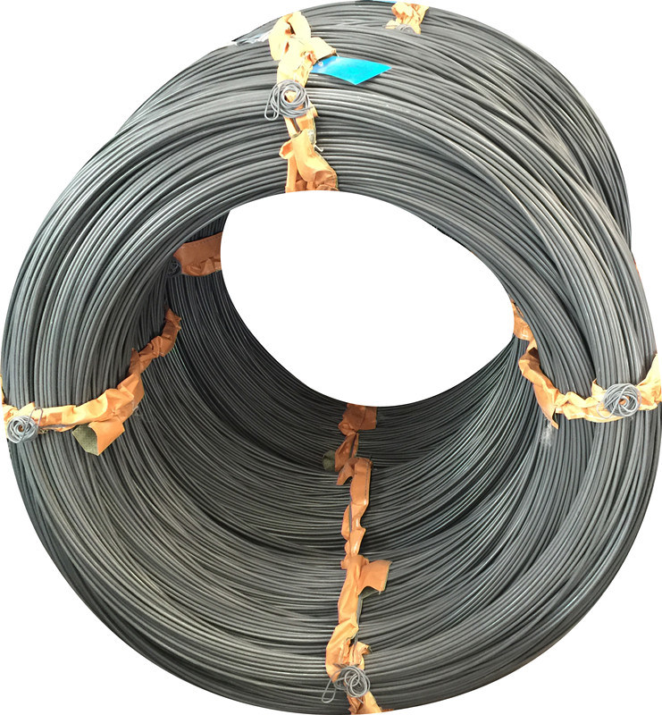 Boron Steel Wire 10b21 for Making Nuts