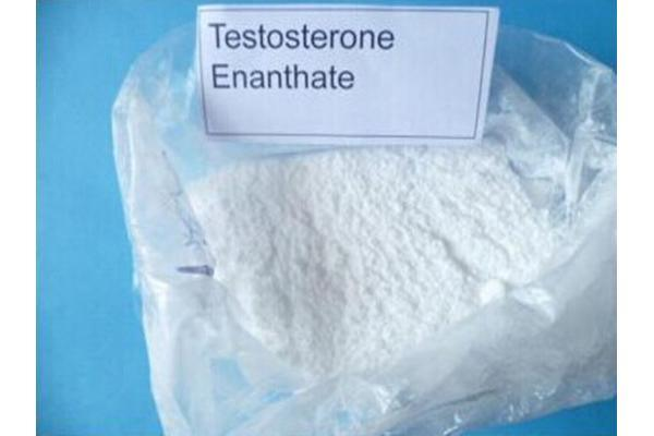 High Purity Bodybuilding Anabolic Steroid Powder Testosterone Enanthate