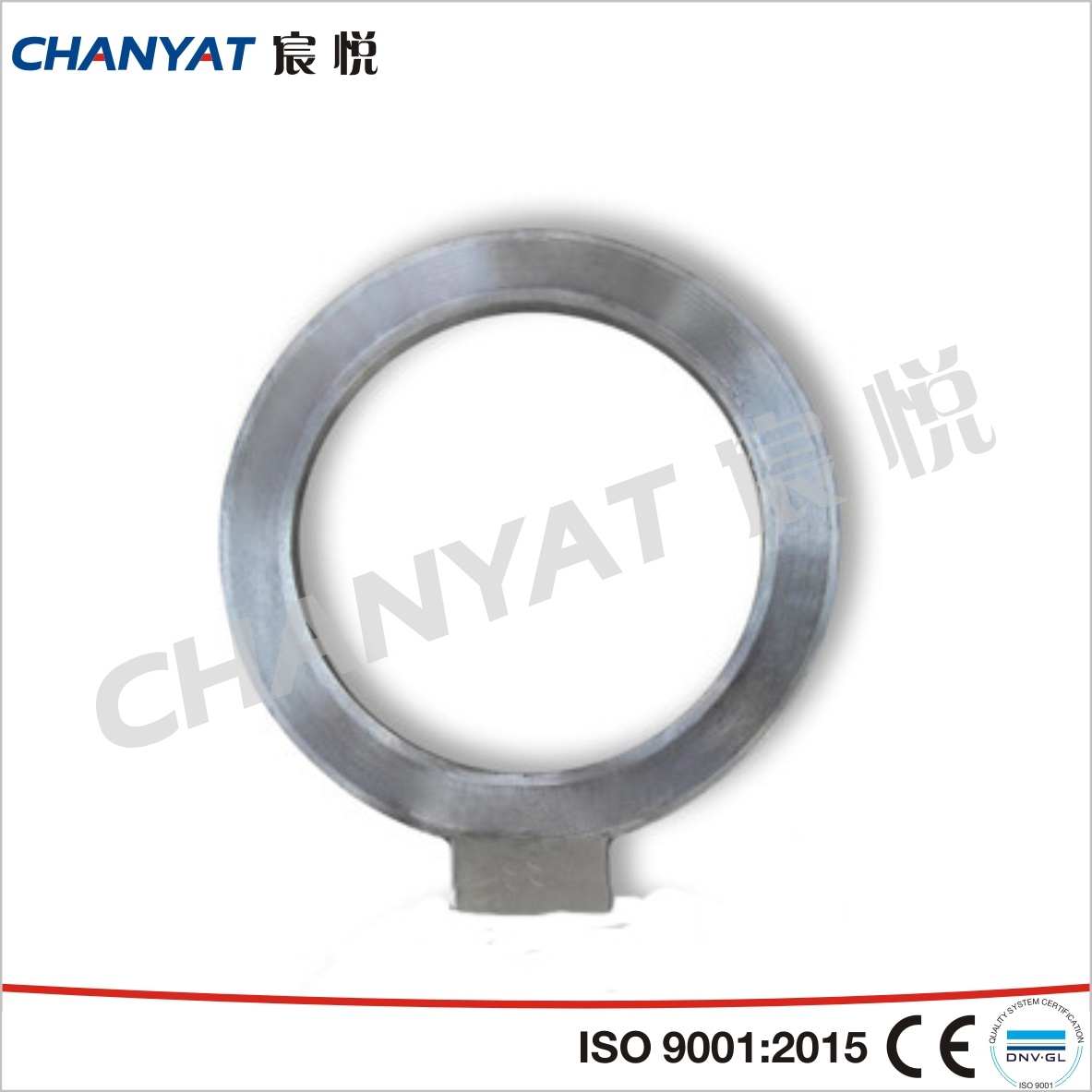 Stainless Steel Blind Flange (F316Ti, F317L, F309H)