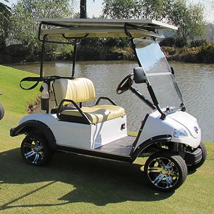 Golf Cart / Buggy /Car with Solar Panel 2seat