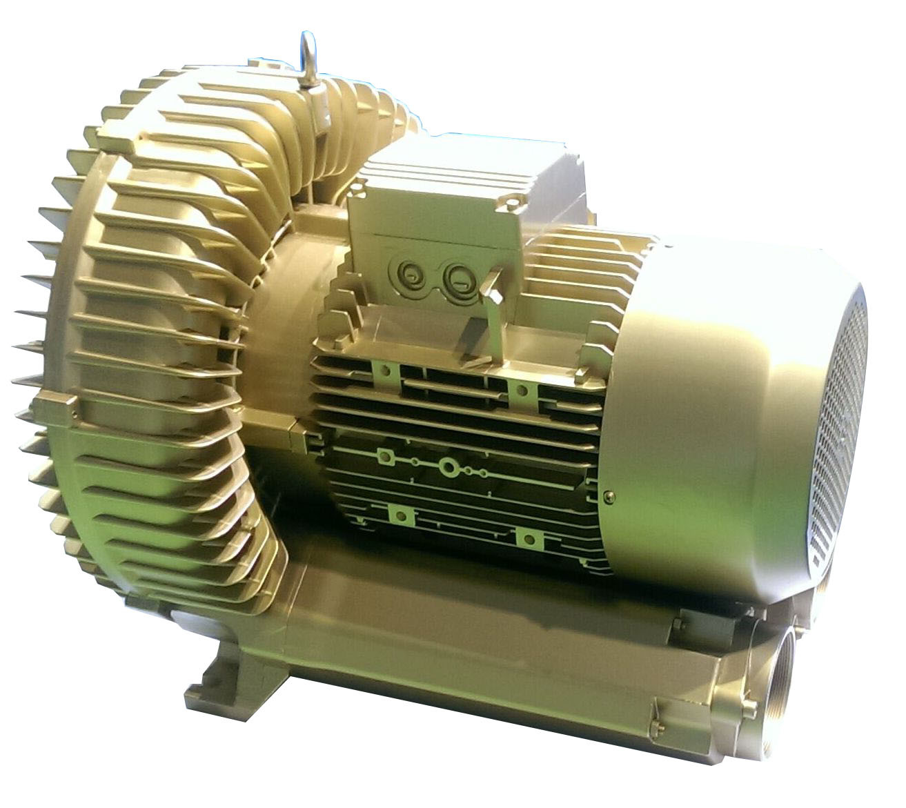 1.3kw Regenerative Blower Air Pump Vortex Blower Vacuum Blower