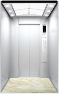Hairless St. St. Decoration Passenger Elevator