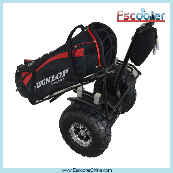 2 Wheel Electric Standing Scooter Prices Electric Golf Car