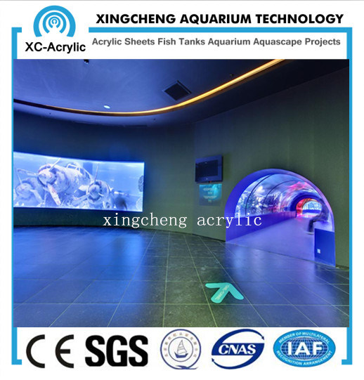 Acrylic Tunnel in Public Aquarium with Various Radian/Unbreakable Plastic Acrylic