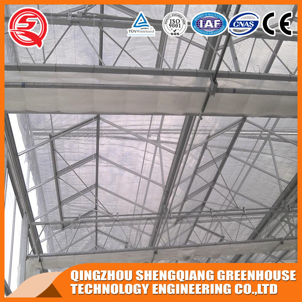 Commerical Polycarbonate Sheet Greenhouse for Vegetables/Garden