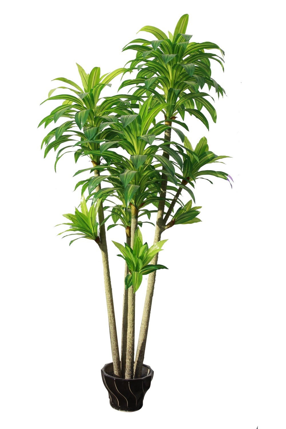 China artificial dracaena emulated houseplant jtla 0001 for Plante dracaena