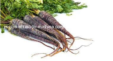 High Quality Black Radish/Carrot Extract, Carotene Powder Vitamin C+B