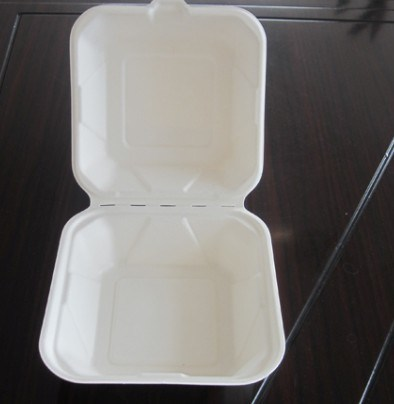 Disposable Sugarcane Bagasse Biodegradable Clamshell