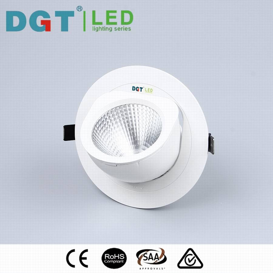 Adjustable 10W/20W/30W COB LED Spotlight with Ce, SAA, RoHS (MQ-7038)