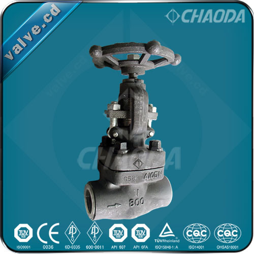 BS5352 Forged Steel Globe Valve Sw/NPT/BSPT