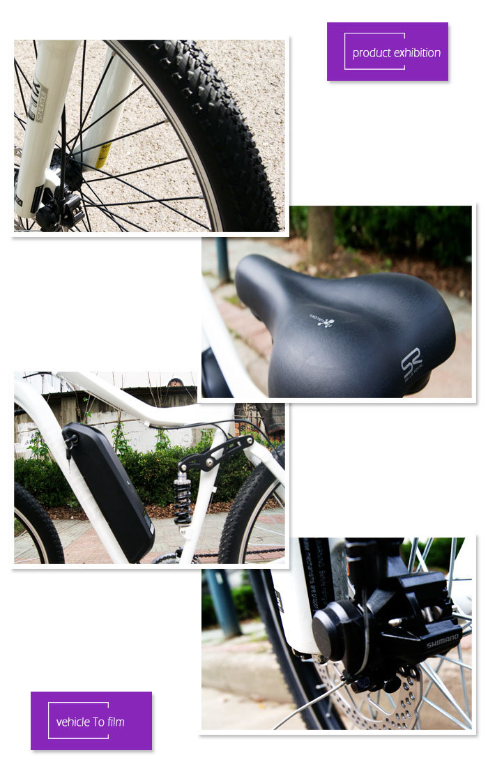 Alumium Frame Electric Bike with 36V 350W Hub Motor