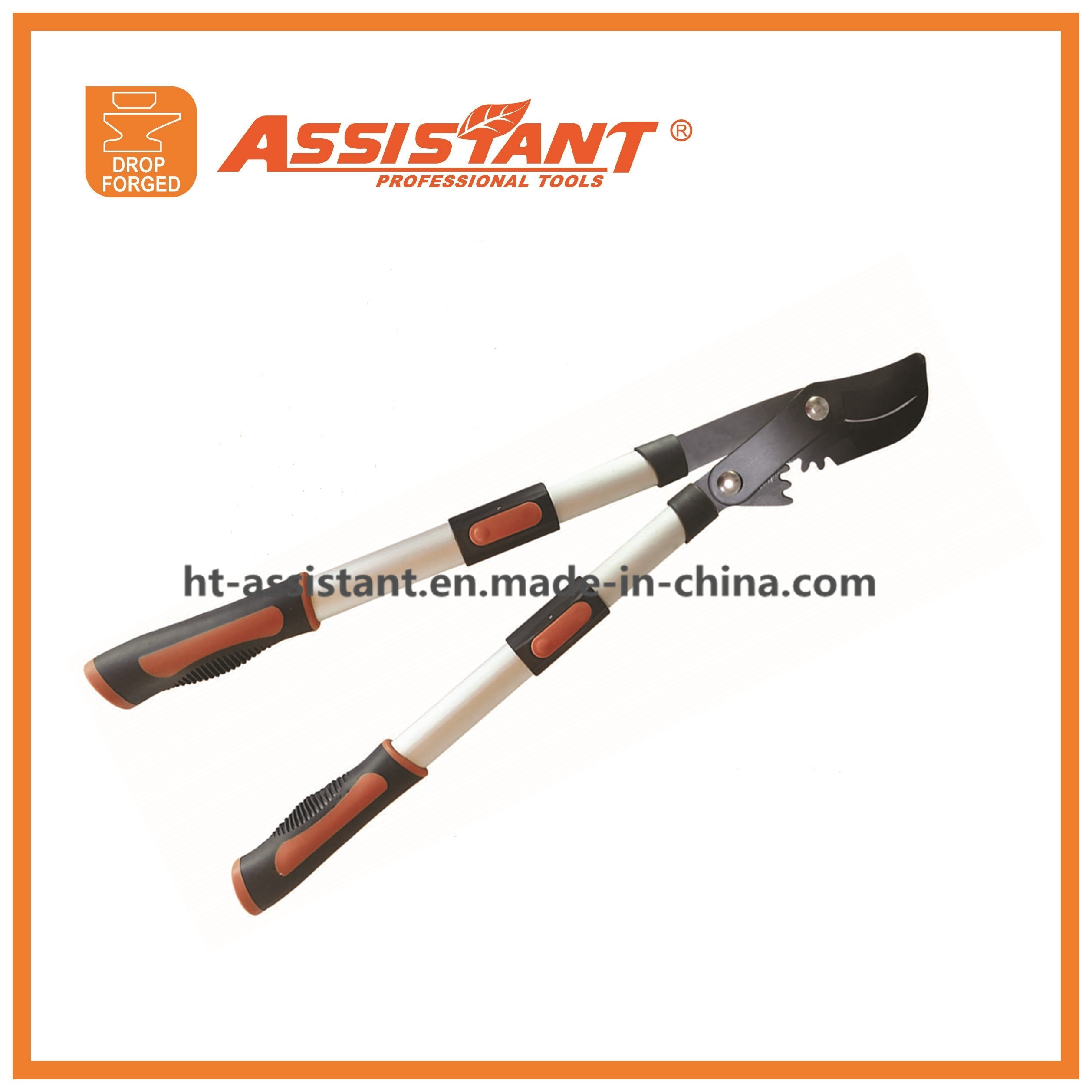 Razorsharp Heavy Duty Telescopic Ratchet Anvil Loppers